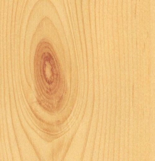 Pine - Knotty