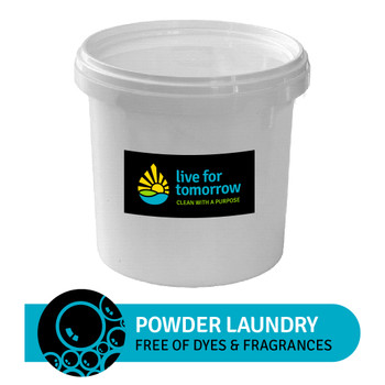 Powder Laundry Detergent, Unscented, 160 loads, 10L I 2.6G