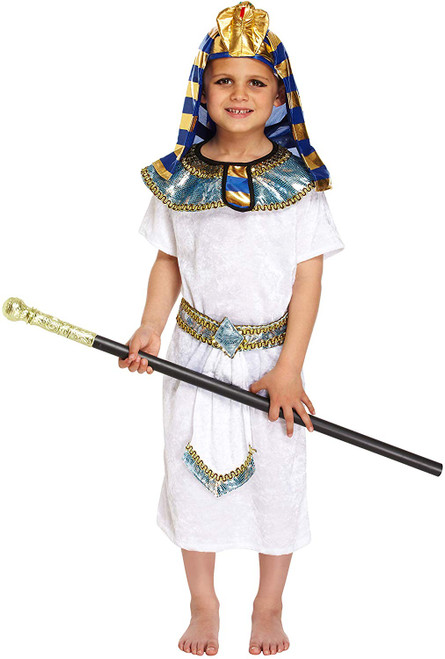Fancy Dress Costume for 10-12 years old