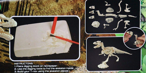 Dino Excavation Kit Digging Dinosaur Fossils Dig Your Own T-Rex Skeleton