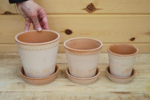 Bergs Helena Pot w/Saucer Rose
