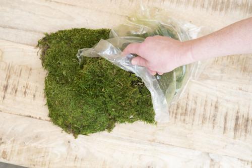1 lb Bag Sheet Moss