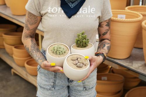 Hannah's Sandy Pots