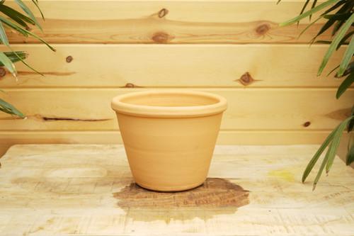 Display Pot