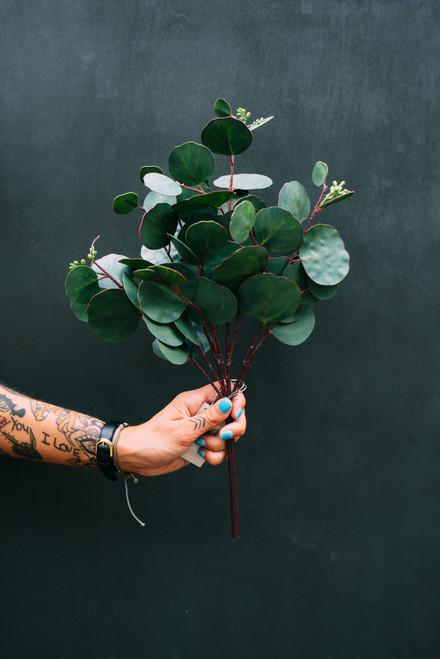 "18"" Seeded Eucalyptus Branch (Faux)"