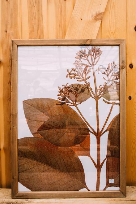 "20.5""X28.25"" Wood Frame Botanic Print"