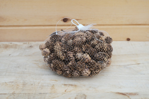 Natural Mini Pinecones