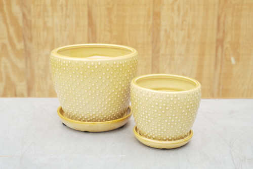 Classic Dot Planter w/Attached Saucer in Marigold