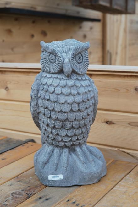 Aged Owl