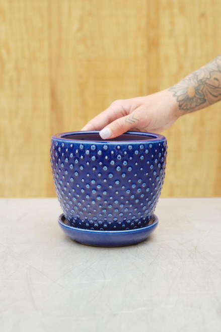 Classic Dot Planter w/Attached Saucer in Blue