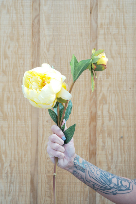 "25"" Yellow Peony Spray (Faux)"