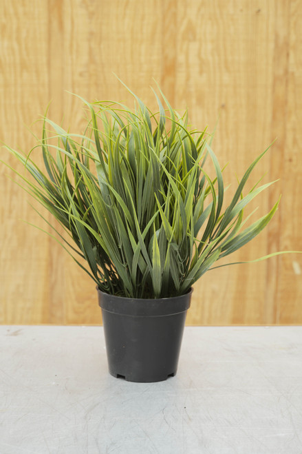 "15"" Spider Grass in Pot (Faux)"