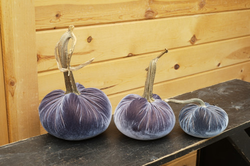 Velvet Pumpkin Denim