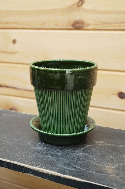 Bergs Large Simona Pot w/Saucer in Green