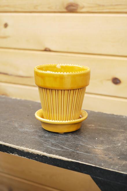 Bergs Small Simona Pot w/Saucer in Yellow