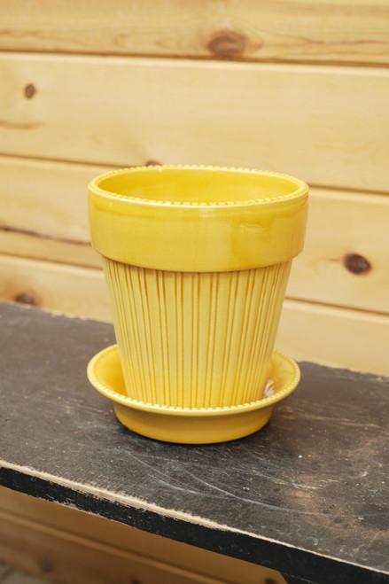 Bergs Large Simona Pot w/Saucer in Yellow