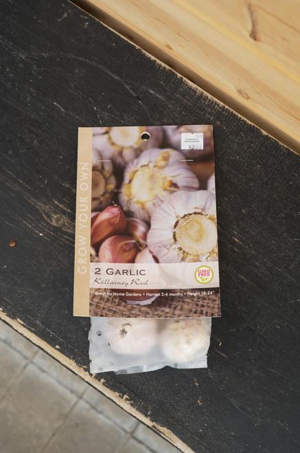 Killarney Red Garlic Bulb
