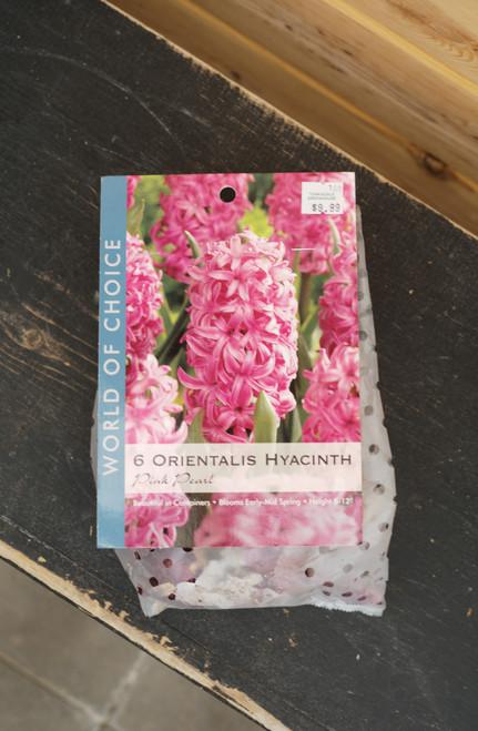 Hyacinths Pink Pearl