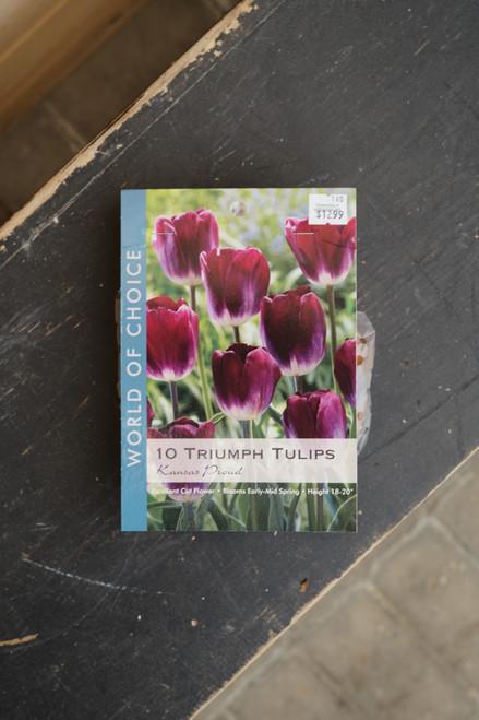 Tulip Triumph Kansas Proud