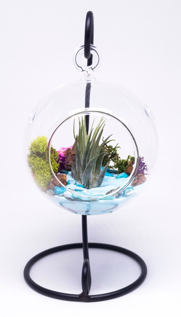 Diy Gift Set Standing Glass Globe Terrarium Container With Stand