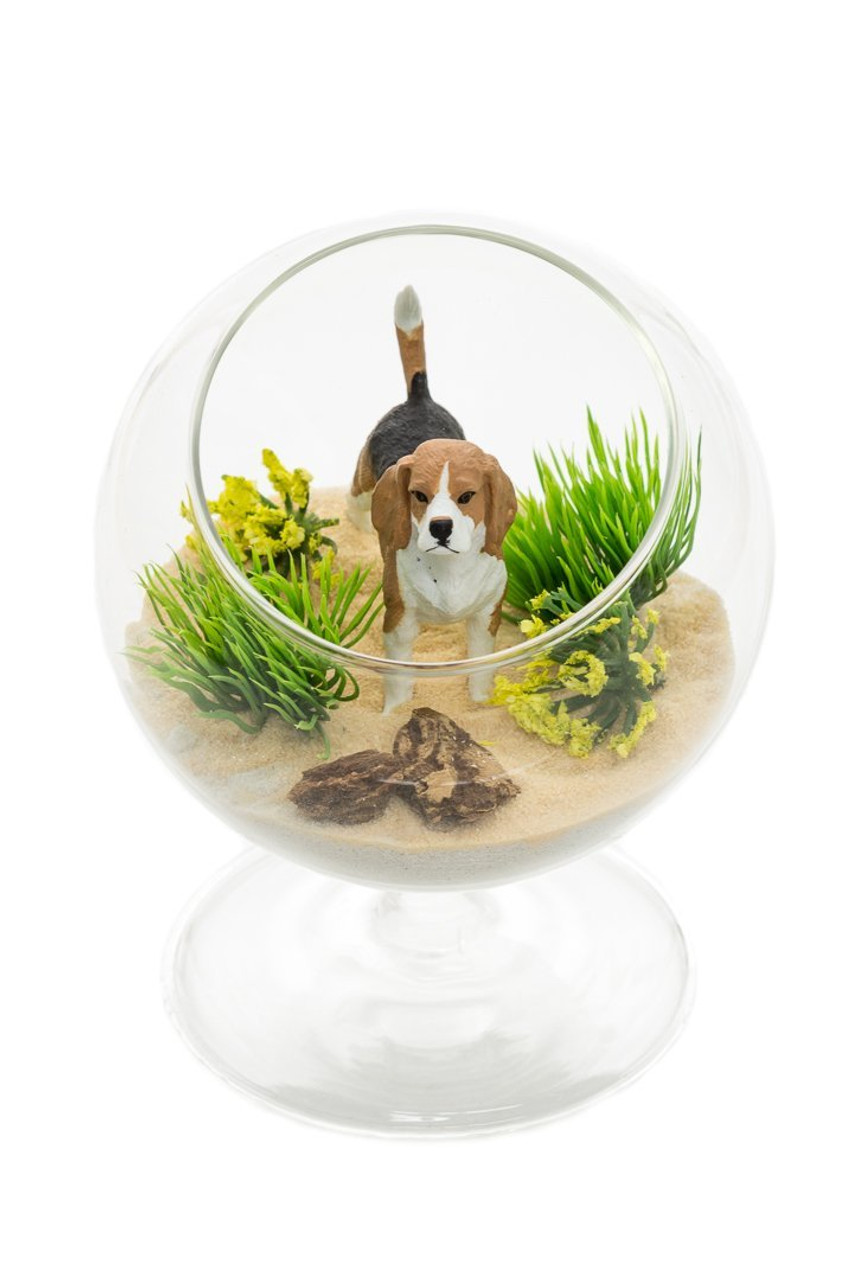 Diy Gift Set 4 Hanging Glass Globe Terrarium Beagle