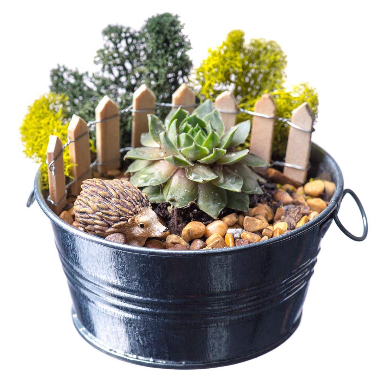 Diy Gift Set 4 Silver Galvanized Pot With Faux Succulent Hedgehog