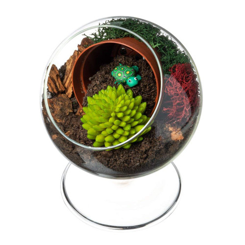 Diy Gift Set 4 Standing Glass Globe With Faux Succulent Turtle
