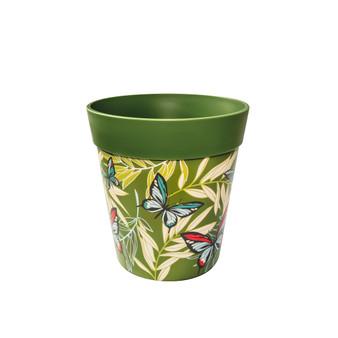 green butterfly palms medium 22cm indoor/outdoor pot