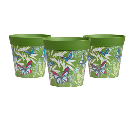 set of 3 small 'butterfly palm' 15cm indoor/outdoor pots