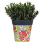 green and red floral, medium 22cm indoor/outdoor pot