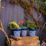set of 3 small blue 'maroc tile' 15cm indoor/outdoor pots