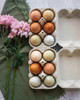 Product photo of White iMagic2® Max - 6-Egg Super Jumbo Flat Top-Paper Pulp Carton filled with multi-color eggs and next to flowers