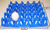 Turkey / Duck Vented Plastic 20-Egg Tray