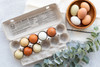Product photo of open Local Hens® Printed No Grade/No Size Paper-Pulp Carton with bowl of multi-color eggs and leafy green plant