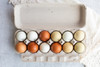 Horizontal open blank 12-Egg Flattop Style Paper-Pulp Carton filled with multi-color farm fresh eggs