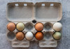 Top view of two open brown paper pulp cartons filled with multicolored eggs.