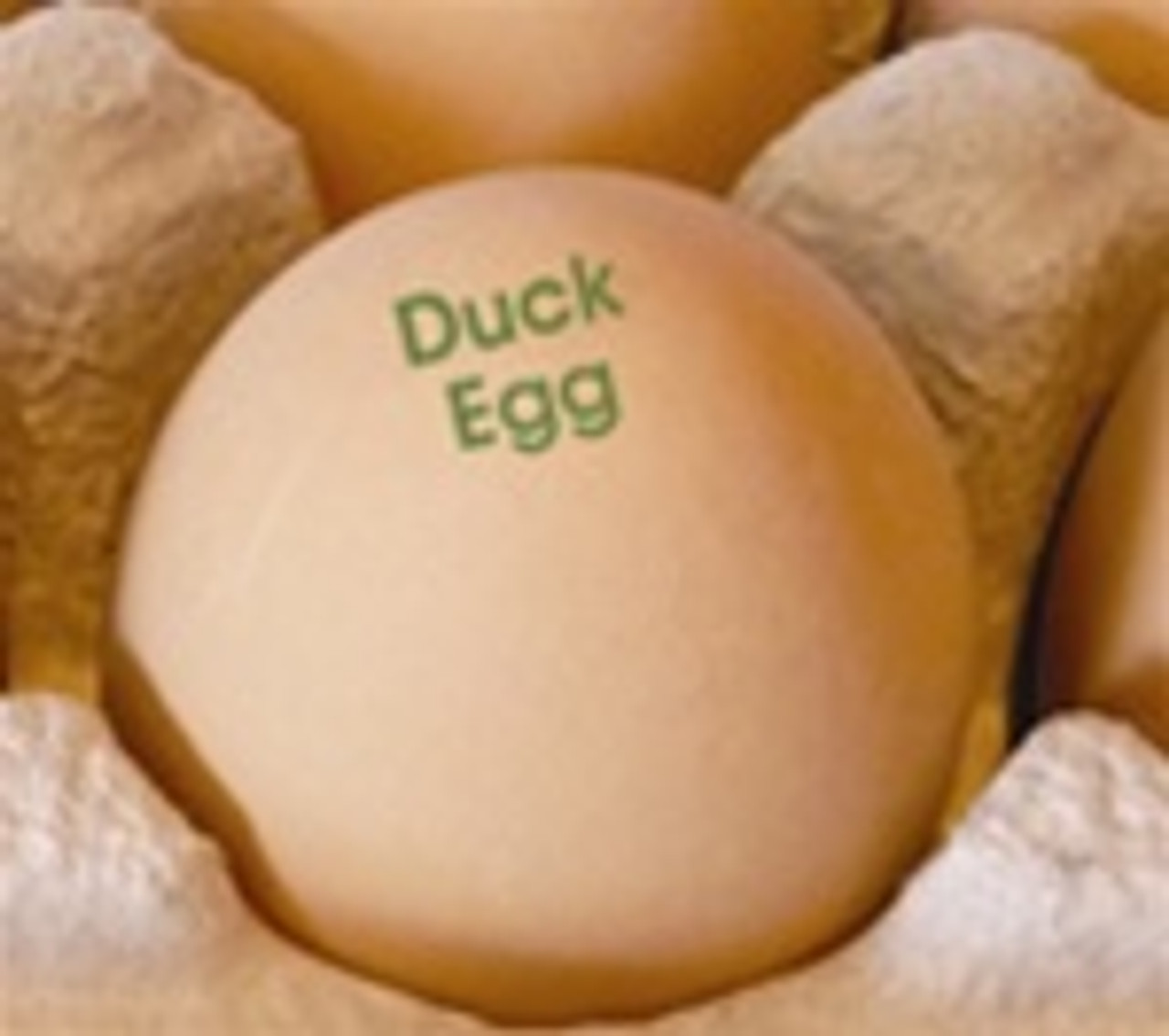 brown egg stamped with the phrase duck egg