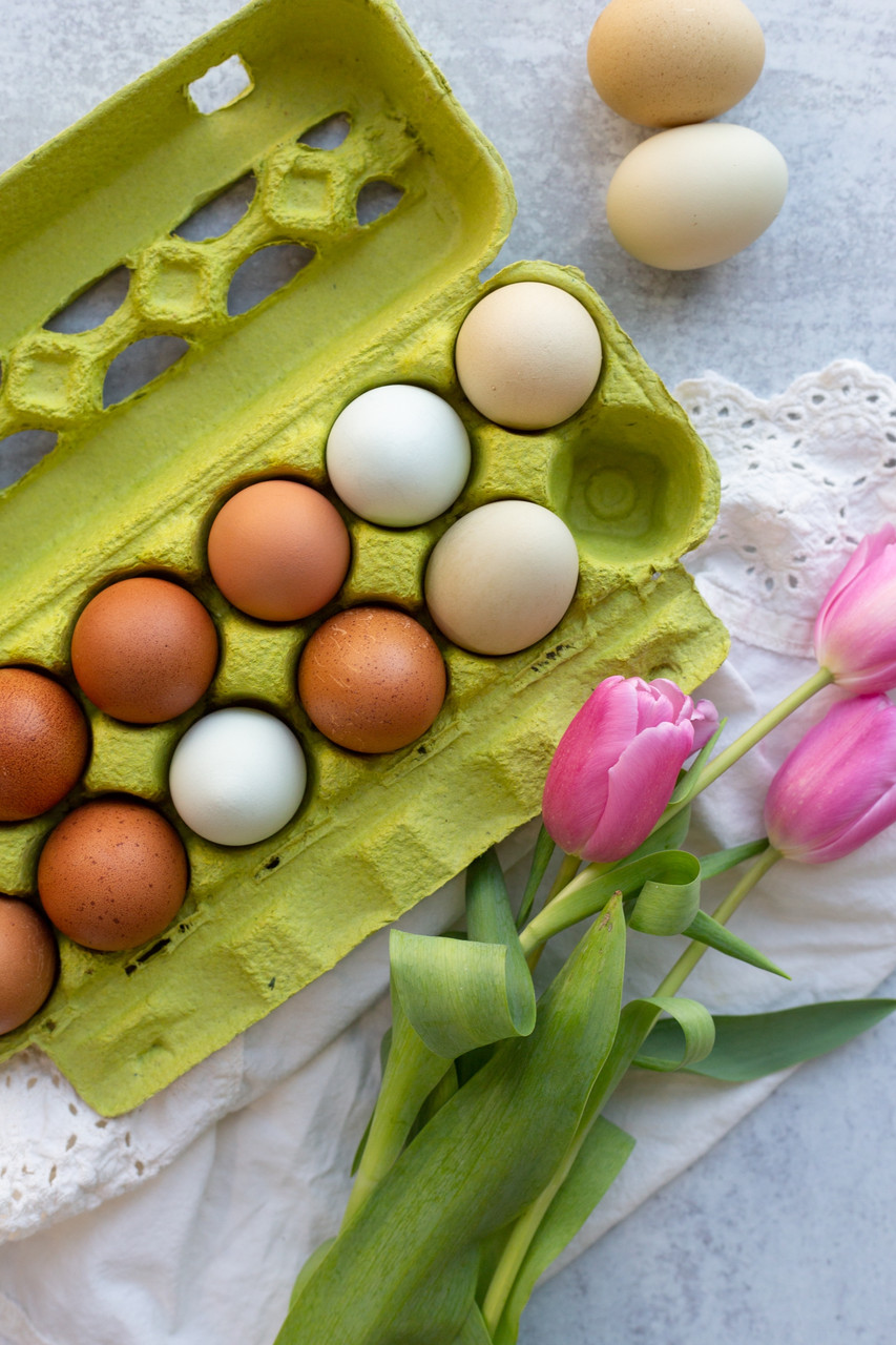 Lime Green Tinted Carton open view filled with eggs
