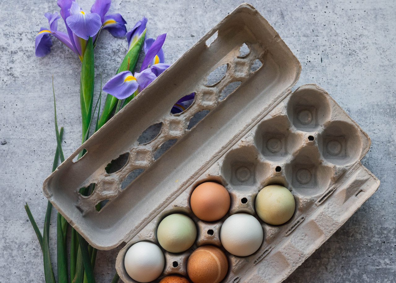 TECS Grade A Large Printed Paper-Pulp Carton with UPC open view filled with eggs and surrounded by purple flowers