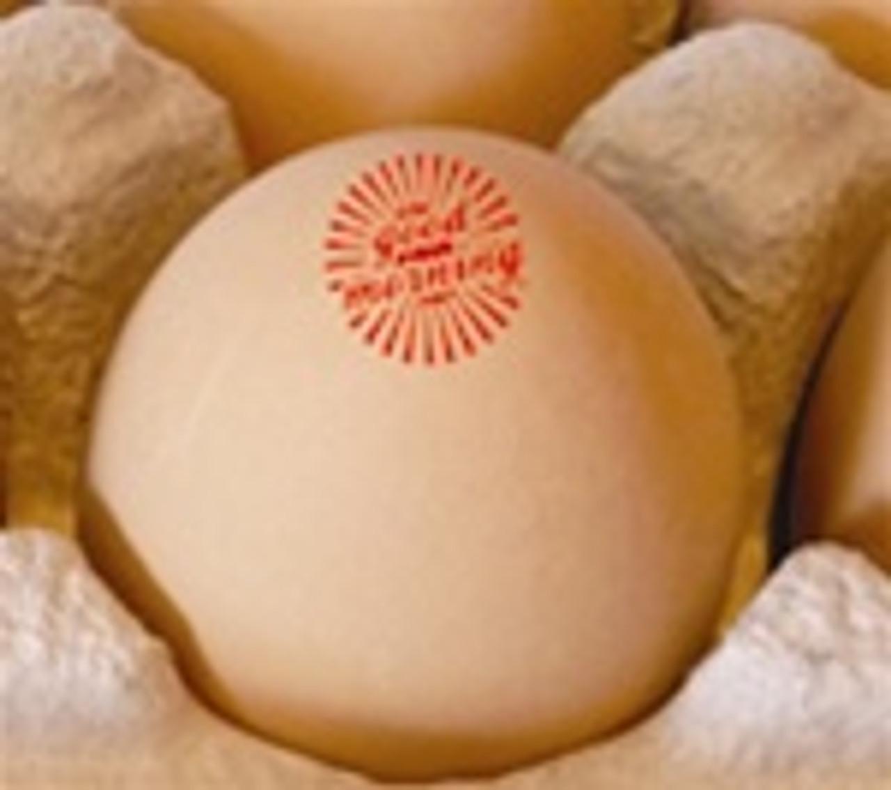 Egg Stamp - Stock Image - Good Morning Sun