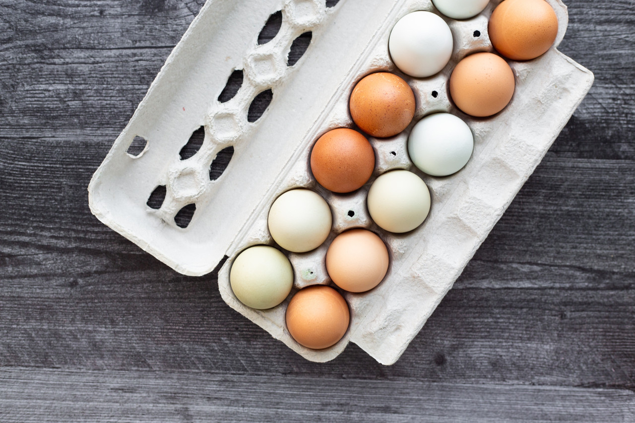 Blank 12-Egg View Style Paper-Pulp Carton with Nutrition Facts, Info & UPC 2 filled with multi-color farm fresh eggs.