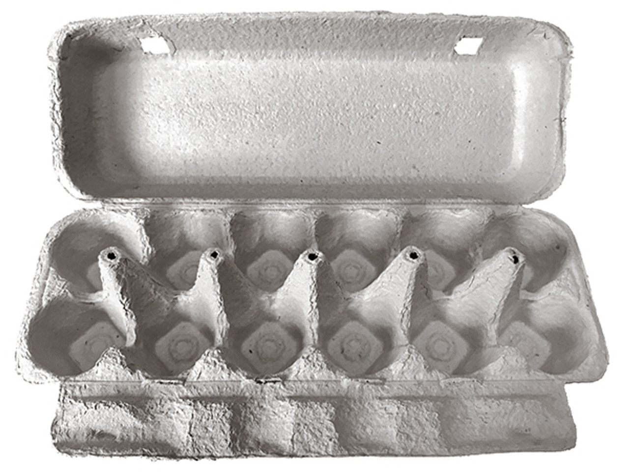 Top view of an open blank 12-Egg Flattop Style Paper-Pulp Carton