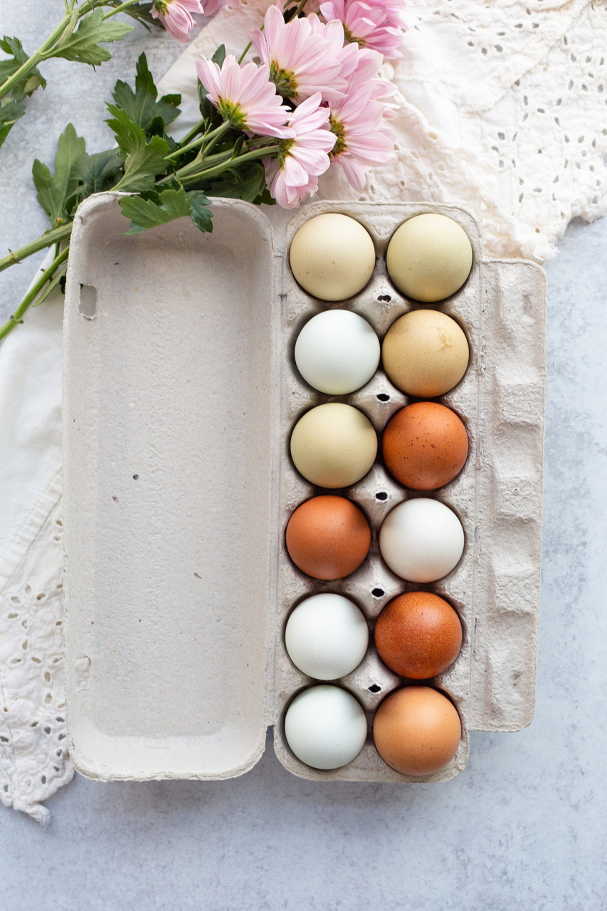 Vertical open blank 12-Egg Flattop Style Paper-Pulp Carton filled with multi-color farm fresh eggs