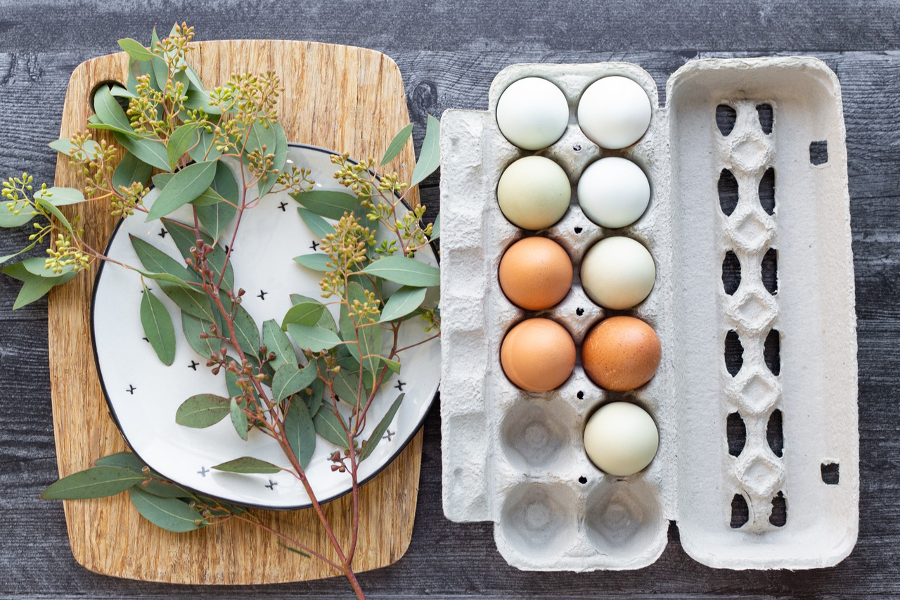Photo of a cutting board covered in green plants next to a blank jumbo 12 egg paper pulp carton filled with multi-color eggs
