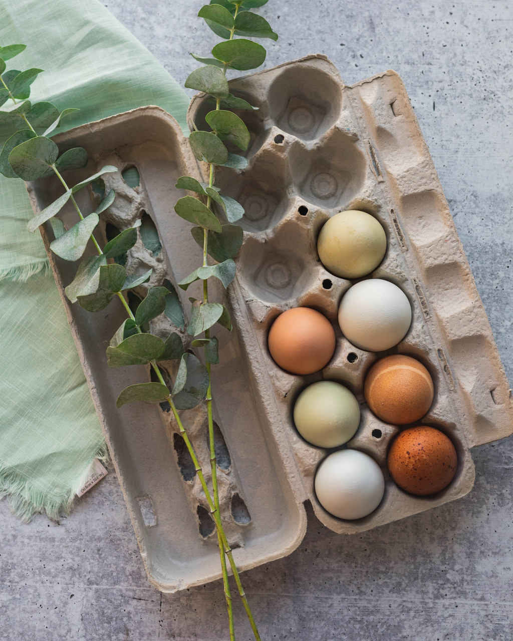 Photo of  a blank jumbo 12 egg paper pulp carton filled with multi-color eggs and plants.
