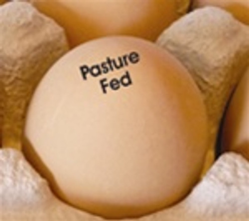 Egg Stamp - Text - Pasture Fed