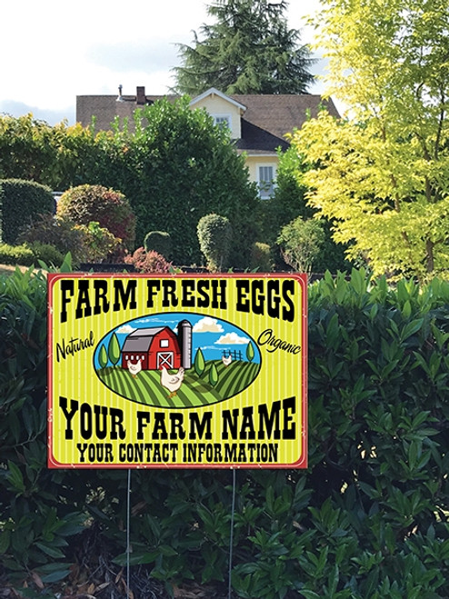 Yard Sign planted in grass that says Farm Fresh Eggs, Yellow Stripe