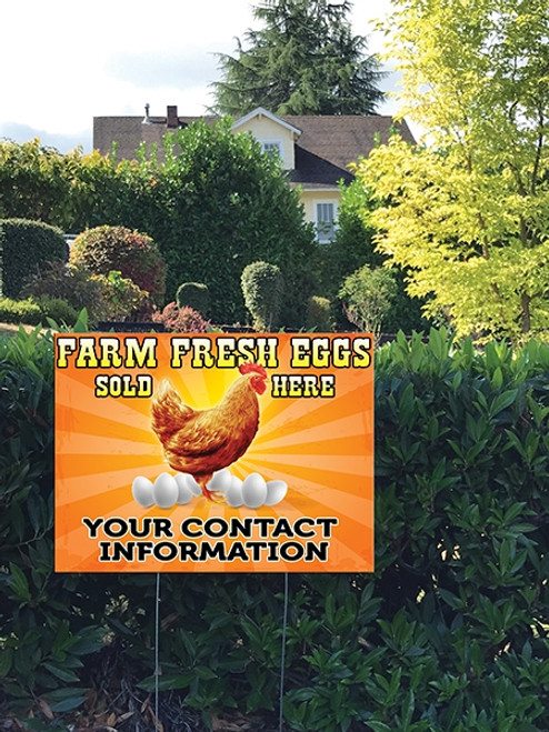 Yard Sign on a backyard farm that says Farm Fresh Eggs, Sun Rays Chicken
