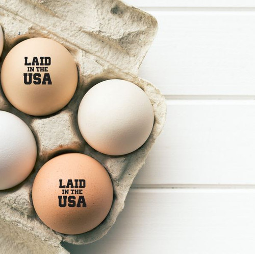laid in the usa egg stamp from the egg carton store
