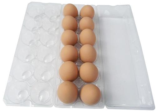 Jumbo Cell 12-Egg Clear Plastic Carton